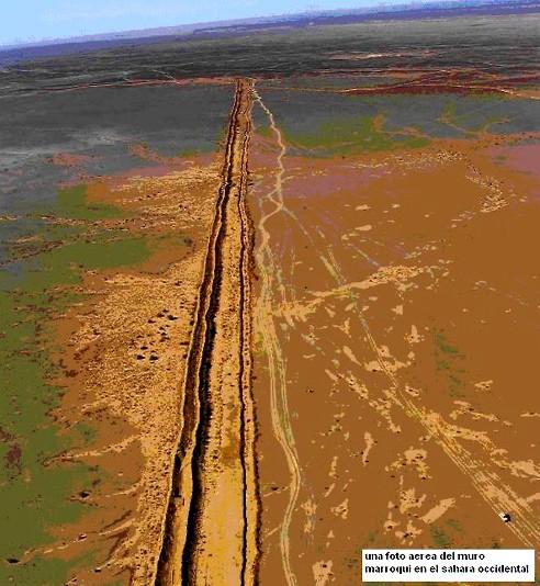 Risultati immagini per Repubblica Saharawi