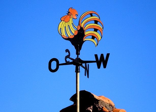 Gallo segnavento oggettistica del gallo e della gallina